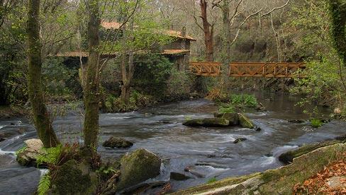 Verdes y el rio Anllons